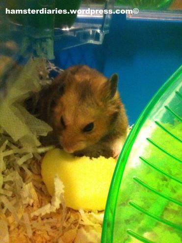 dexter eating apple