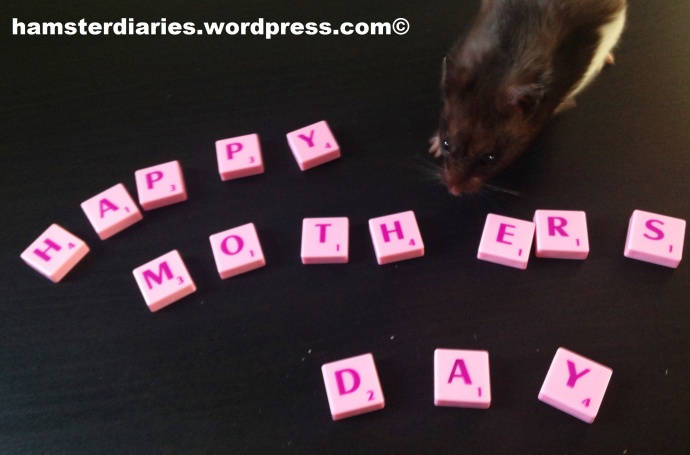 Happy Mothers Day :)